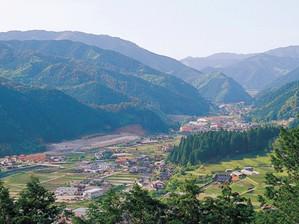 Photo2011110101